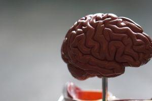 Brain Injury Awareness