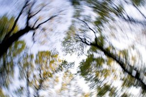 Imbalance and Dizziness How We Can Help